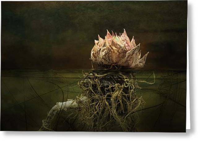 Floating Flowers Greeting Cards - Disconnected Greeting Card by Jan Piller