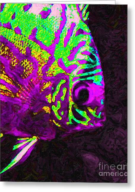Fresh Water Fish Greeting Cards - Discus Tropical Fish 2 Greeting Card by Wingsdomain Art and Photography