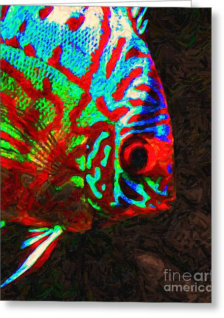 Fresh Water Fish Greeting Cards - Discus Tropical Fish Greeting Card by Wingsdomain Art and Photography