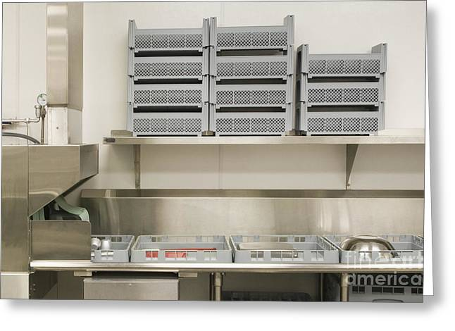 Drying Rack Greeting Cards - Dish Washing Area in a Commercial Kitchen Greeting Card by Andersen Ross