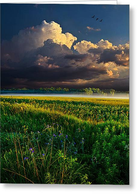 Geographic Greeting Cards - Distant Thunder Greeting Card by Phil Koch