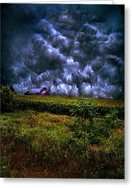 Geographic Greeting Cards - Disturbance Greeting Card by Phil Koch