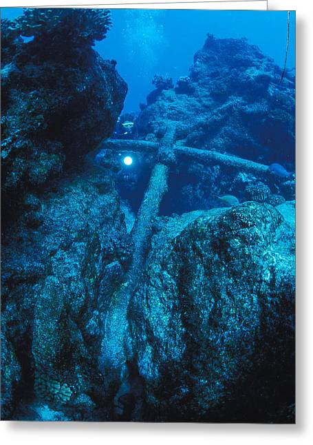 Anchor Underwater Greeting Cards - Diver And Anchor From Old Shipwreck Greeting Card by Nick Norman