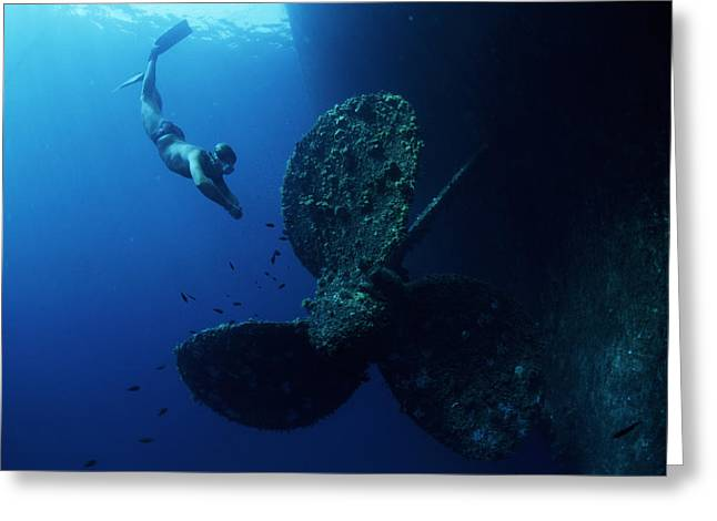 Aquatic Greeting Cards - Diver By Shipwrecks Propeller Greeting Card by Alexis Rosenfeld