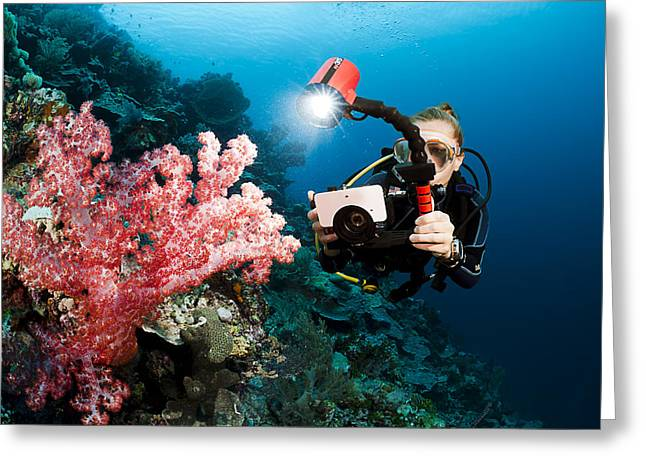 Undersea Photography Greeting Cards - Diver Photographing Soft Coral Greeting Card by Dave Fleetham