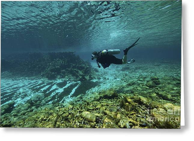 Oxygen Tank Greeting Cards - Diver Swims Through The Shallow Reef Greeting Card by Terry Moore