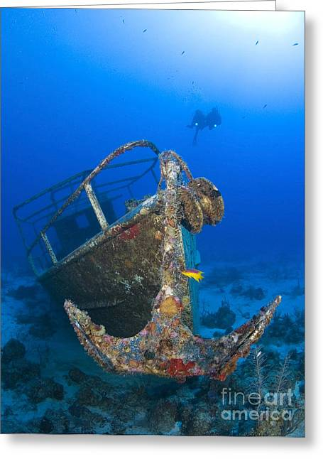 Anchor Underwater Greeting Cards - Divers Visit The Pelicano Shipwreck Greeting Card by Karen Doody