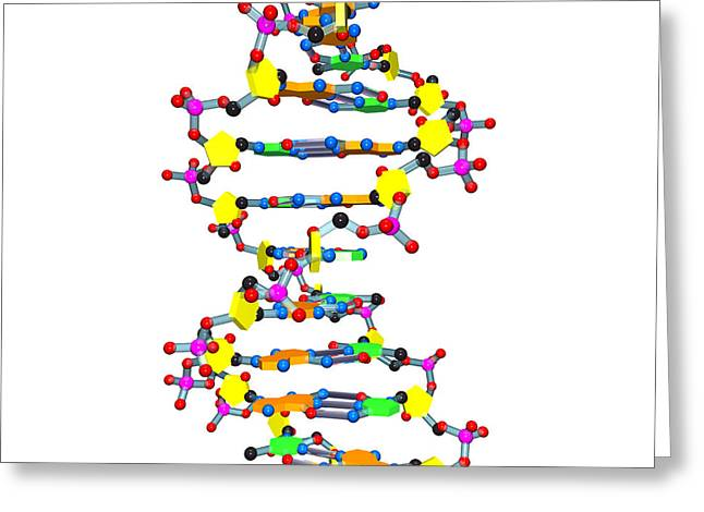 DNA 37 white Greeting Card by Russell Kightley