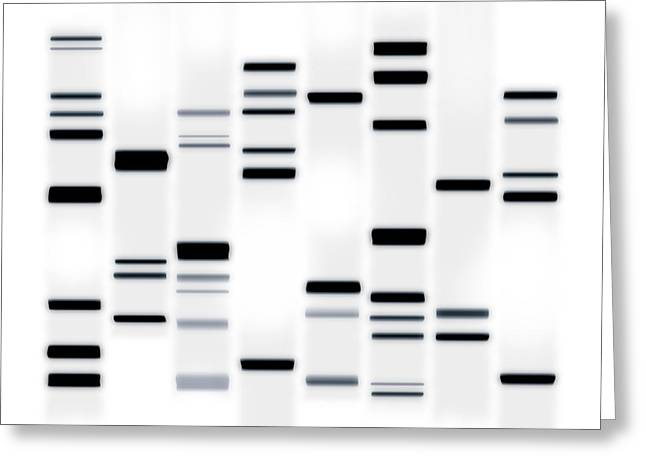 DNA Art Black on White Greeting Card by Michael Tompsett