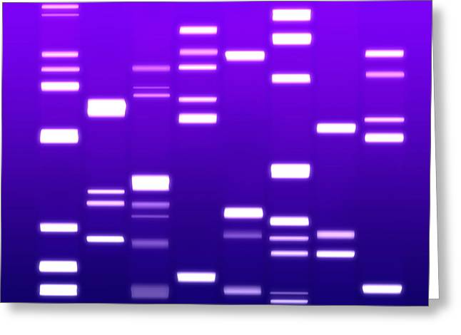 Biology Greeting Cards - DNA purple Greeting Card by Michael Tompsett