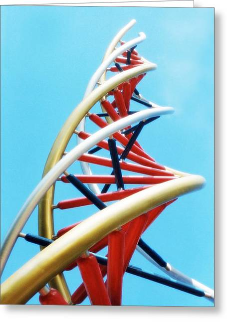 Meshed Photographs Greeting Cards - Dna Sculpture Greeting Card by Victor Habbick Visions