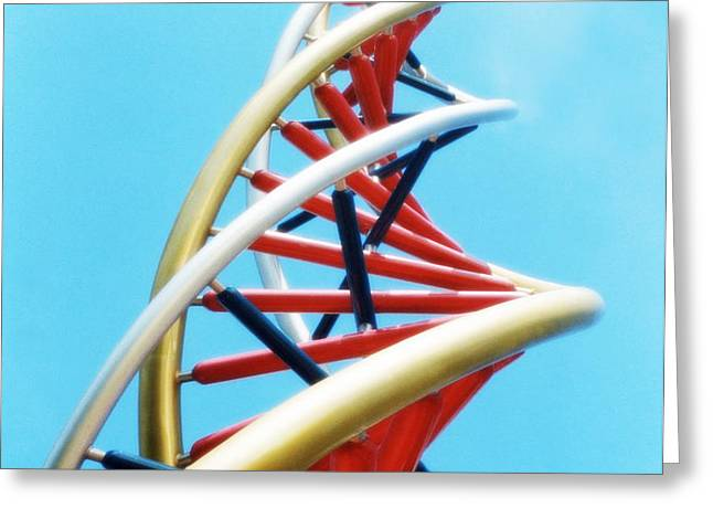 Dna Sculpture Greeting Card by Victor Habbick Visions