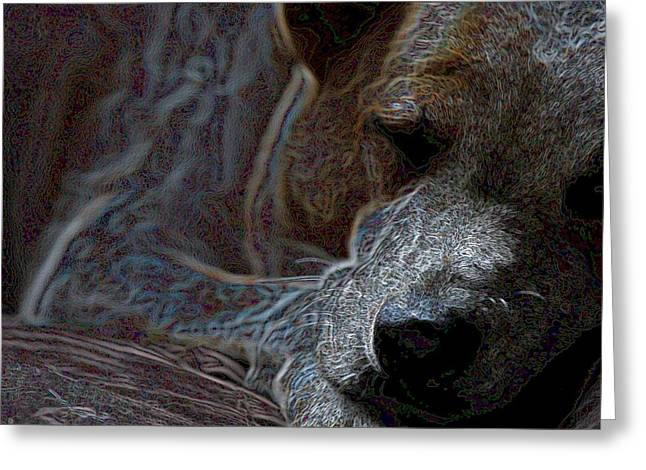 Do Not Disturb Greeting Card by One Rude Dawg Orcutt