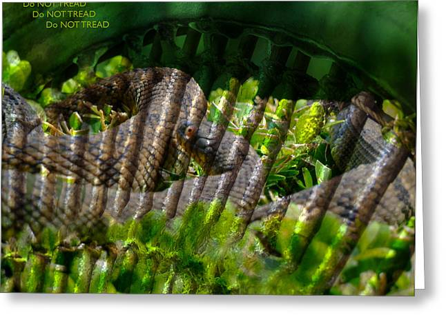 Snake Flag Greeting Cards - Do Not Tread - Or Die Greeting Card by Stephen Paul West