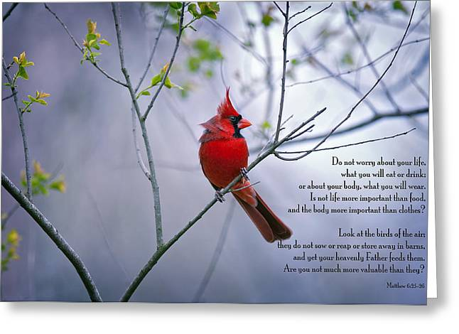 Trust Greeting Cards - Do not worry . . .  Greeting Card by Bonnie Barry