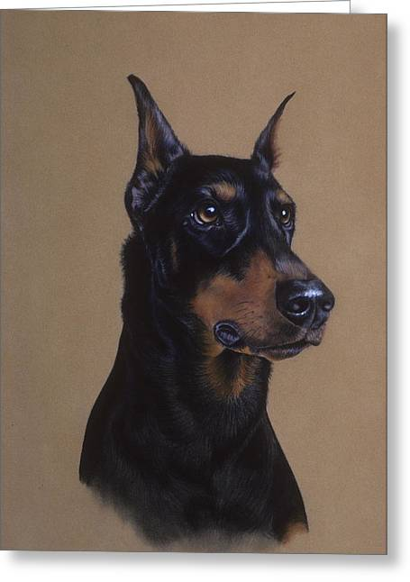 Guard Dog Pastels Greeting Cards - Doberman Pinscher Greeting Card by Patricia Ivy