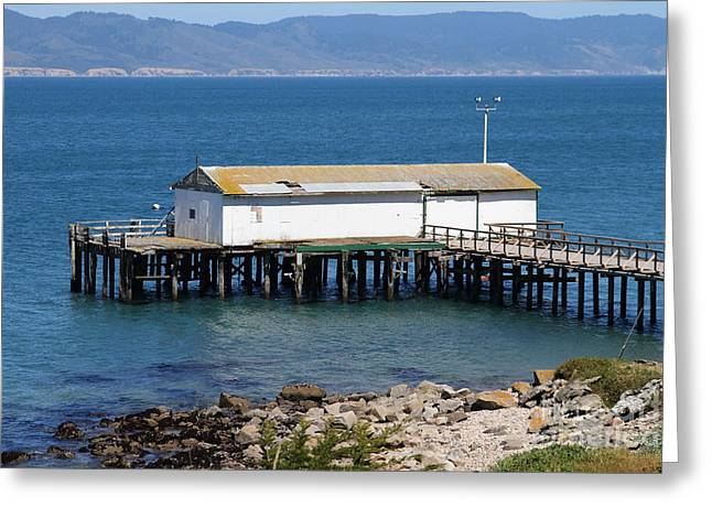 Old Shack Greeting Cards - Dock At Point Reyes Calfornia . 7D16070 Greeting Card by Wingsdomain Art and Photography