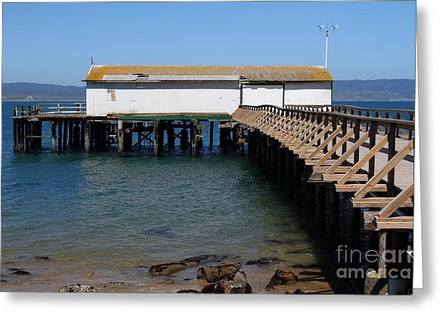 Old Shack Greeting Cards - Dock At Point Reyes Calfornia . 7D16073 Greeting Card by Wingsdomain Art and Photography