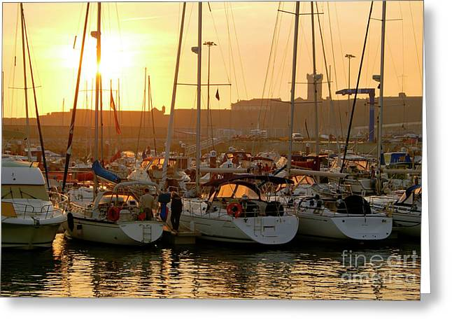 Lineup Greeting Cards - Docked Yachts Greeting Card by Carlos Caetano