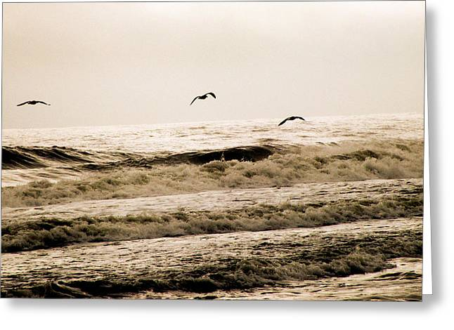 Dodging The Waves Greeting Card by Trish Tritz