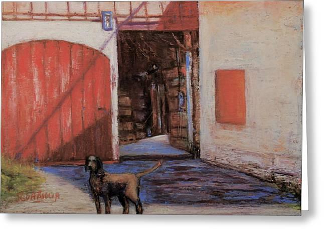 Hounddog Greeting Cards - Dog and Barn Greeting Card by Joyce A Guariglia