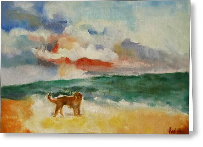 Dog On The Beach Greeting Card by Susan Hanlon