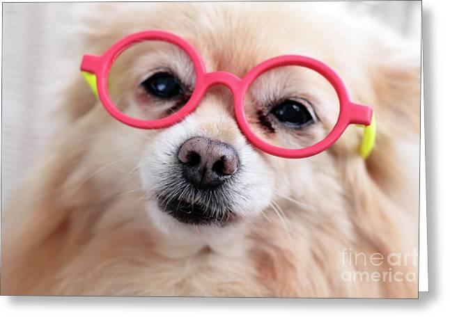 Dog Head Greeting Cards - Dog Portrait Greeting Card by Charline Xia