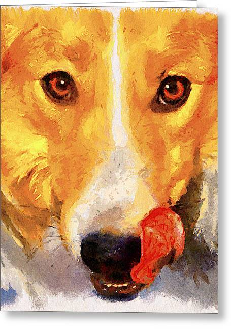 House Pet Greeting Cards - Dog Portrait Greeting Card by Yury Malkov