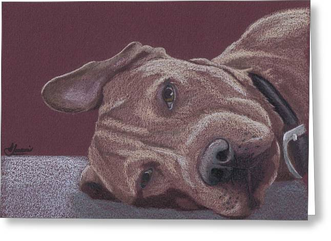 Pitted Greeting Cards - Dog Tired Greeting Card by Stacey Jasmin