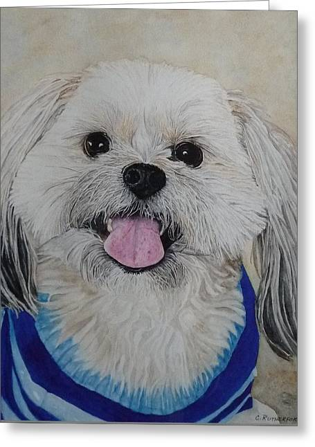 Dog Sweaters Greeting Cards - Doggie Love Greeting Card by Claudia Rutherford
