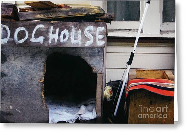 Doghouse Greeting Cards - Doghouse 2 Greeting Card by Nareeta Martin