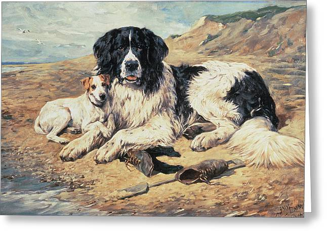1843 Greeting Cards - Dogs Watching Bathers Greeting Card by John Emms