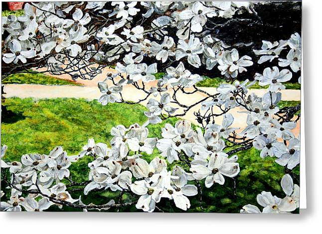Dogwood Blooms In A Virginia Church Yard Greeting Card by Thomas Akers