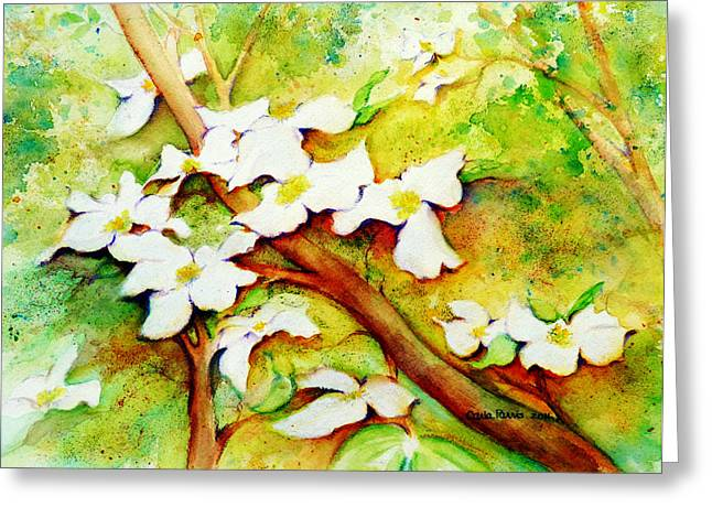 Dogwood Flowers Greeting Card by Carla Parris
