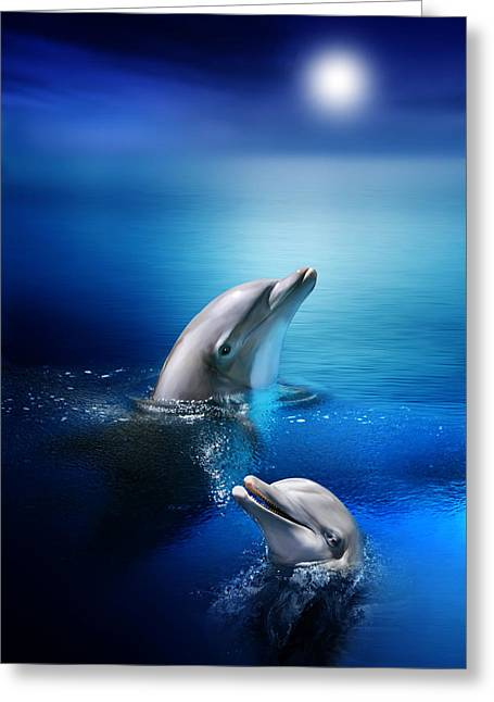 Dolphin Greeting Cards - Dolphin Delight Greeting Card by Julie L Hoddinott