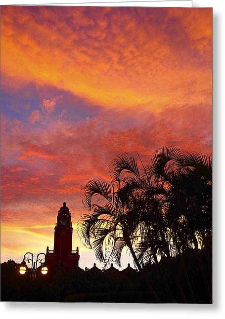 Domingo Greeting Cards - Domingo Greeting Card by Skip Hunt