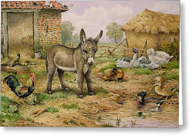 Cocks Greeting Cards - Donkey and Farmyard Fowl  Greeting Card by Carl Donner