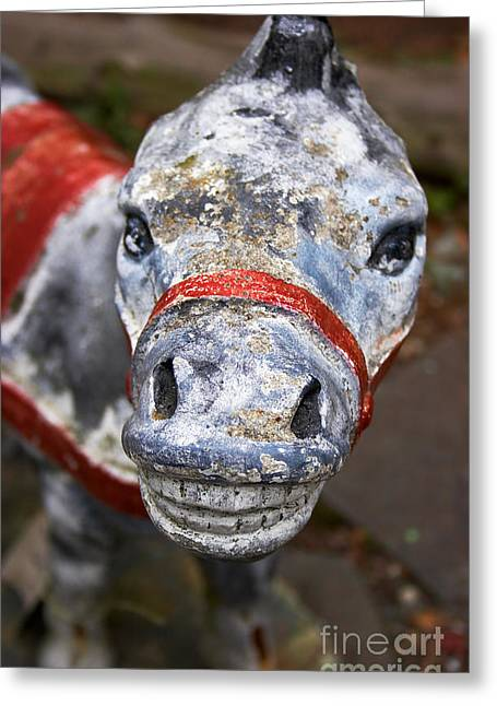 Jackass Greeting Cards - Donkey without Ears Greeting Card by Susan Isakson