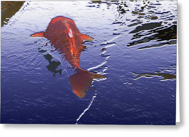 Don't Be Koi Greeting Card by Teri Schuster