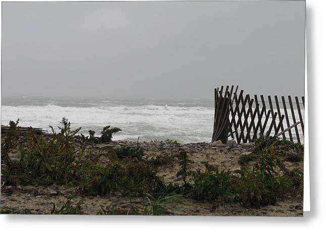 Best Sellers -  - Storm Clouds Cape Cod Greeting Cards - Dont Take A Fence Greeting Card by Brian Mazzoli