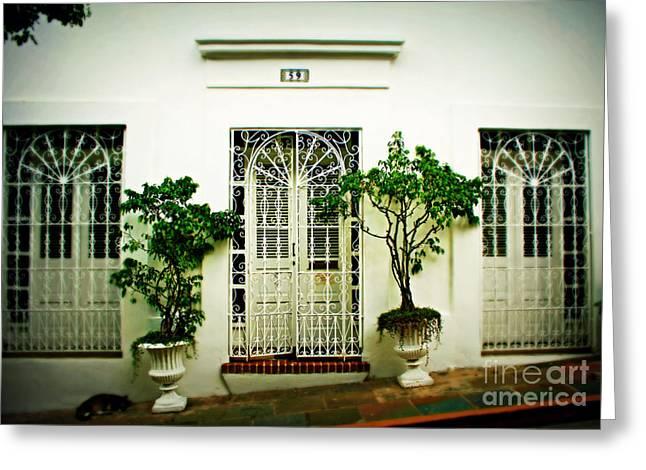 Old San Juan Greeting Cards - Door 59 Greeting Card by Perry Webster