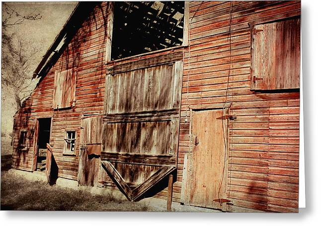 Shed Photographs Greeting Cards - Doors Open Greeting Card by Julie Hamilton