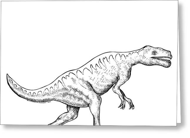 Nature Study Drawings Greeting Cards - Dorkosaurus - Dinosaur Greeting Card by Karl Addison