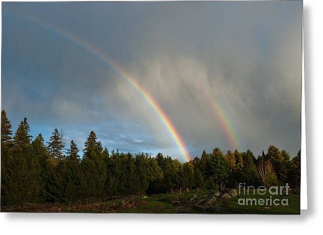 Double Rainbow Greeting Cards - Double Blessing Greeting Card by Cheryl Baxter
