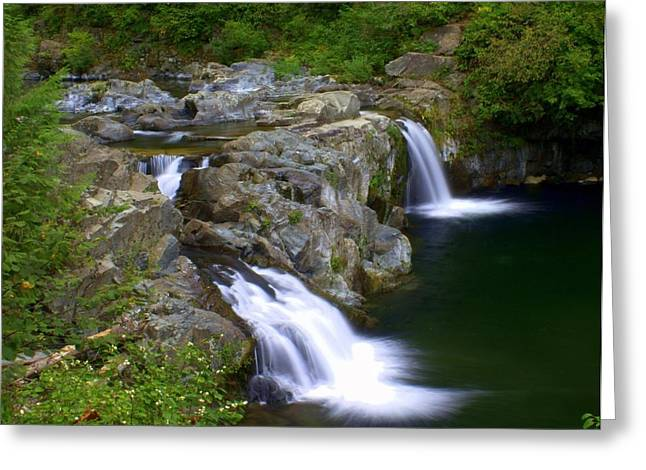Marty Koch Greeting Cards - Double Falls Greeting Card by Marty Koch