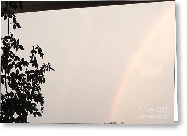 Double Rainbow Greeting Cards - Double Rainbow Greeting Card by Debbie Wassmann