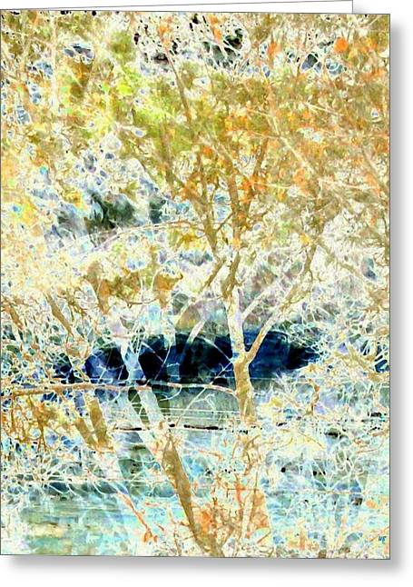 Double Image Greeting Cards - Double Vision Greeting Card by Will Borden