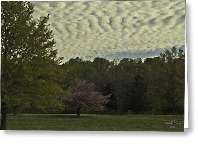 Berks County Greeting Cards - Douglassville Delight Greeting Card by Trish Tritz