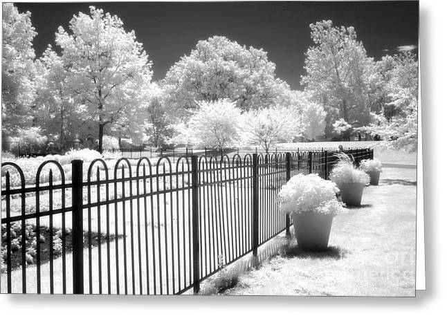 Surreal Fantasy Infrared Fine Art Prints Greeting Cards - Dow Gardens Infrared Michigan Landscape Fine Art Greeting Card by Kathy Fornal