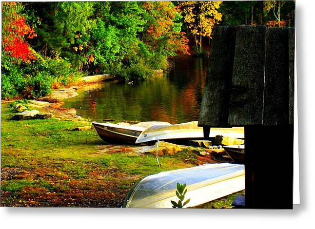 Fine Art In America Greeting Cards - Down By the Riverside Greeting Card by Karen Wiles